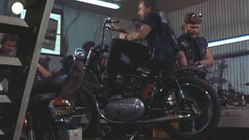 in Hells Angels on Wheels