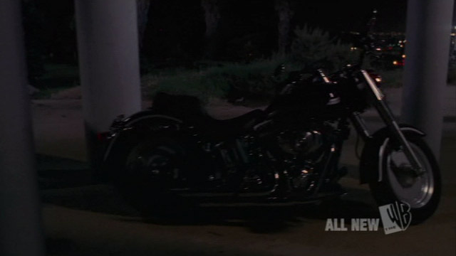 Softail Fat Boy in Angel