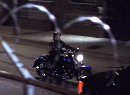 Softail Fat Boy in Bulworth