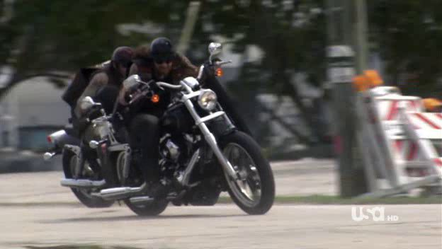 Dyna Street Bob in Burn Notice
