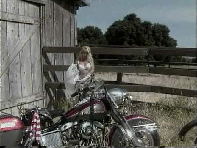 Electra Glide in Girls of the Sunset Strip