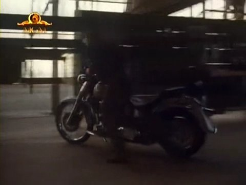 Softail Fat Boy in Night of the Warrior