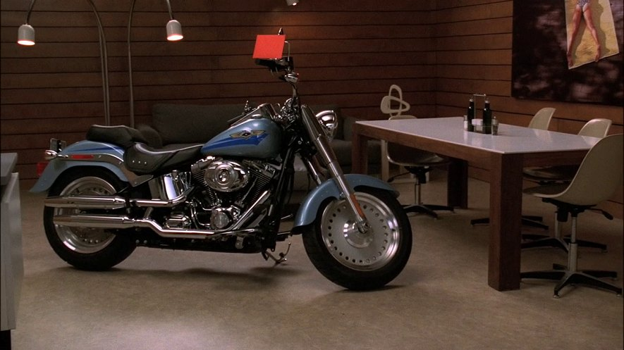 Softail Fat Boy in Nip/Tuck