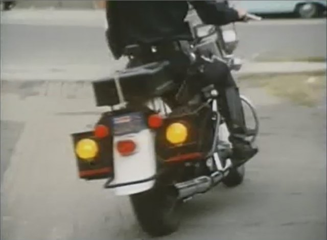 Electra Glide in Police Story
