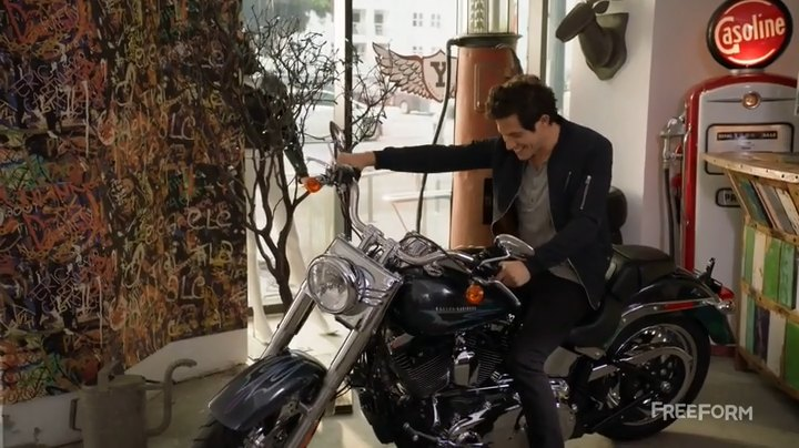 Softail Fat Boy in Stitchers